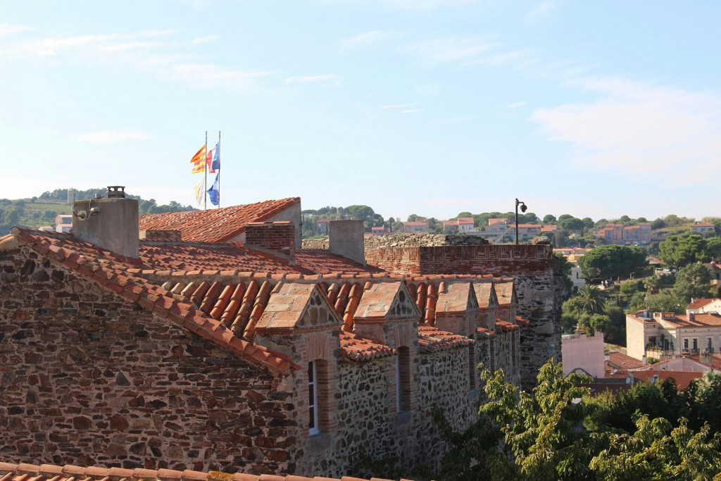 Vue sur les toits du Château Royal