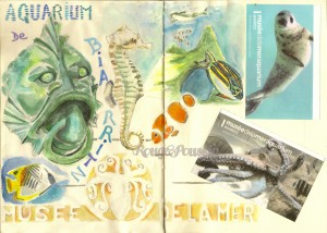 L'aquarium de Biarritz …