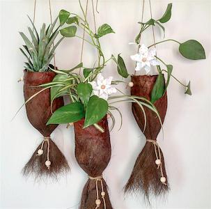 Présentation des cache-pots réalisés en fibre de palmier