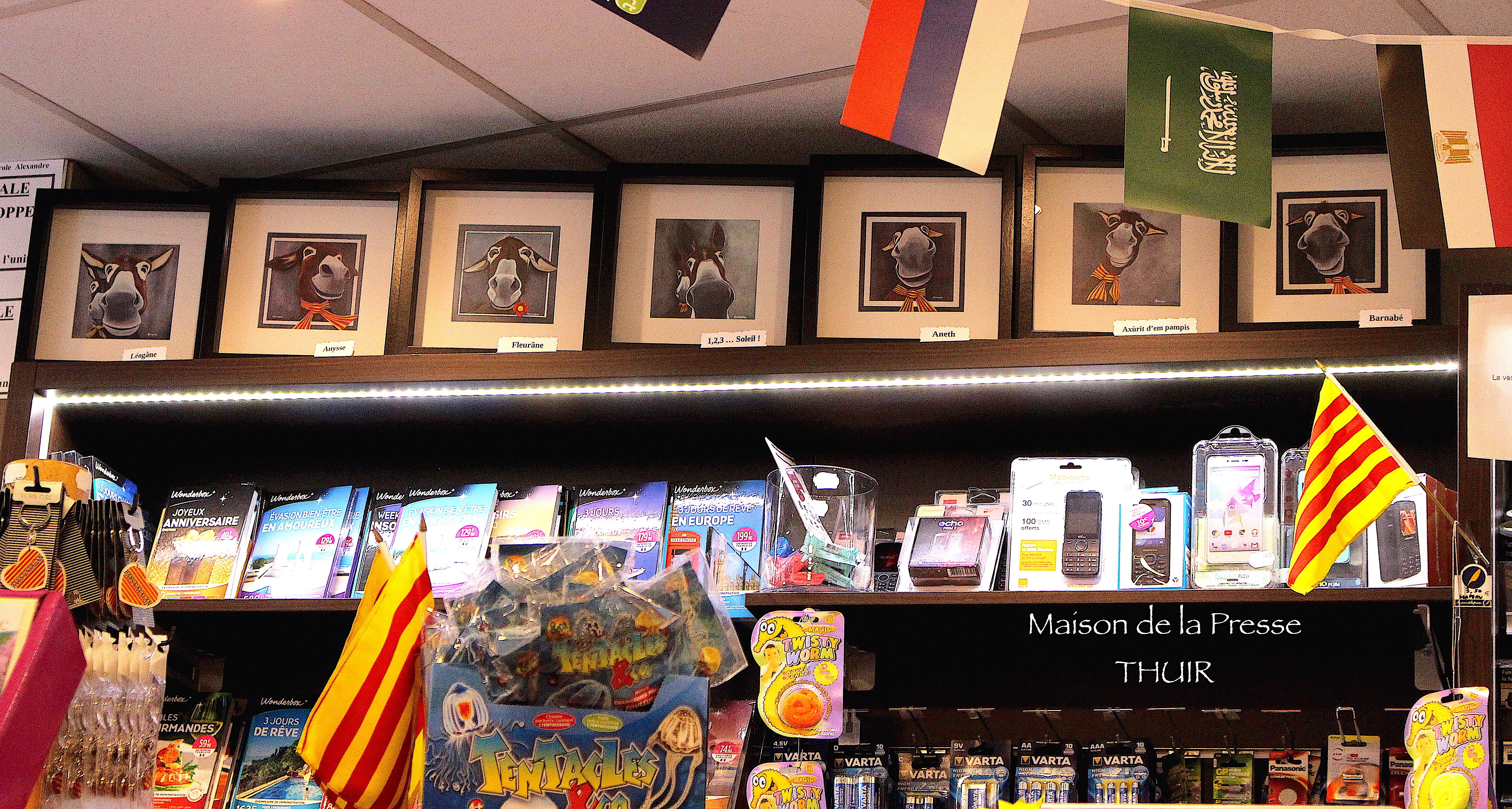 Cartes postales encadrées à la maison de la presse à Thuir