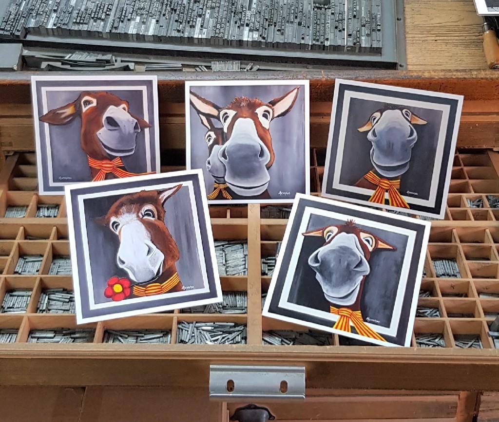 5 nouvelles cartes postales représentant de très sympathiques ânes