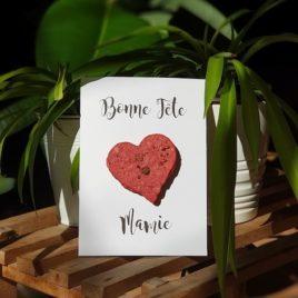 Carte avec un coeur rempli de graines que Mamie va pouvoir semer le jour de sa fête et le voir fleurir au printemps.